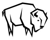 new-buffalo